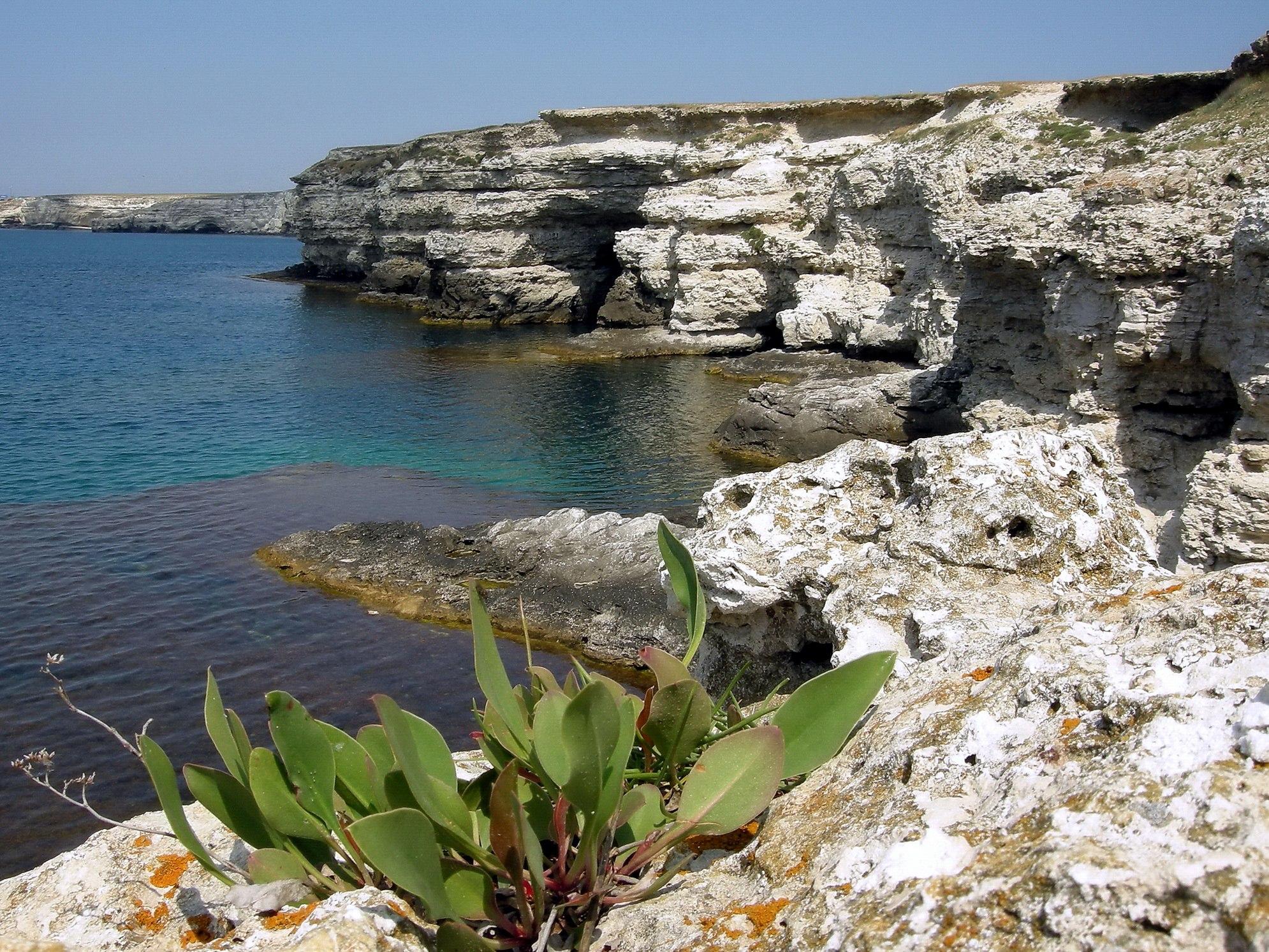 Отдых на крымском полуострове фото 5