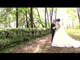 Весілля в Новограді-Волинському. Прогулянка