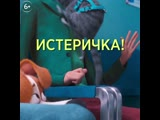 15_PETS2_AtVet_Twins_Hamster_Daisy_1x1_HD