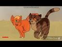Коты воители Место-Где-Тонет-Солнце