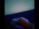лизун из зубной пасты без  клея луч