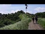 Тропа художника. Campuhan Ridge Walk. Убуд. Бали.