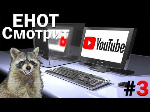 ЕНОТ СМОТРИТ [С ВЕБКОЙ] - YouTube 3