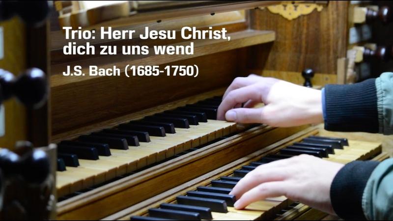 Trio: Herr Jesu Christ, dich zu uns wend | BWV 655 | J.S. Bach | Martien de Vos | Dinteloord