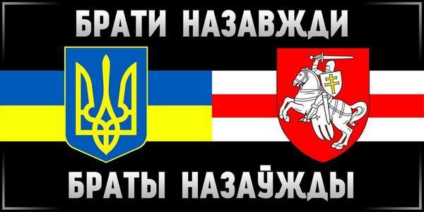 На территории Донецкого аэропорта ОБСЕ зафиксировала неидентифицированные человеческие останки - Цензор.НЕТ 3382