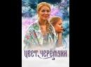 Сериал Цвет черемухи Сезон 1 Серия 12
