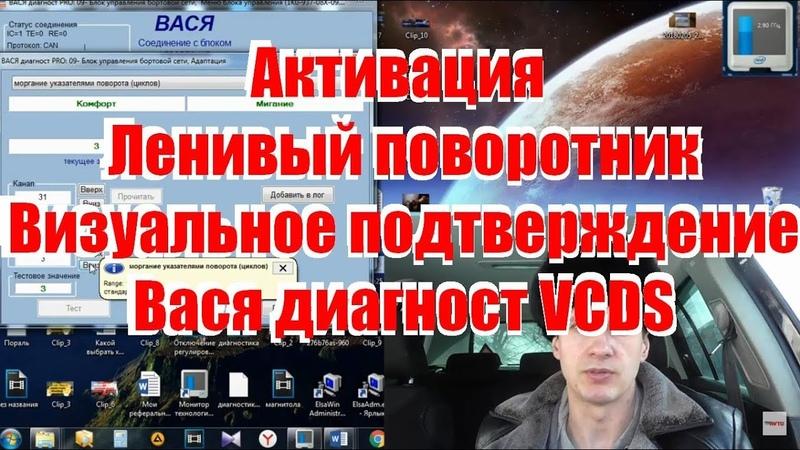 Комфортный указатель и визуальное подтверждение ВАСЯ VCDS