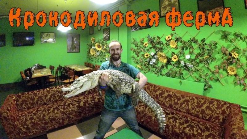 А давайте посетим Свердловскую крокодиловую ферму?!