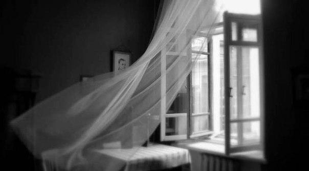 «Жили-были…»: грустное стихотворение про «особый случай» в нашей