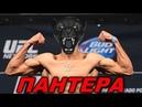 Сокрушительная Пантера Яир Родригес. Боец UFC который удивляет всех! Лучшие моменты Нокауты.