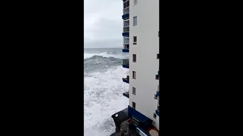 Beachfront property (Tenerife Island in the Canary peninsula,)