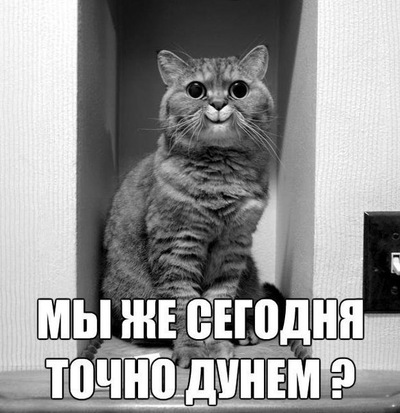 Константин Калашников, 31 декабря 1994, Архангельск, id179649886