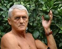 Александр Тимохин, 13 августа 1991, Орехово-Зуево, id93824688