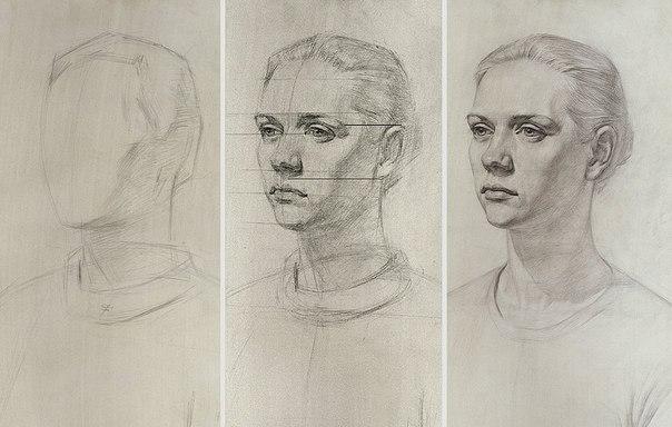 Рисунок головы человека.