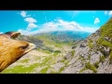 Through an Eagle's Eyes Breathtaking 4K POV over the Alps