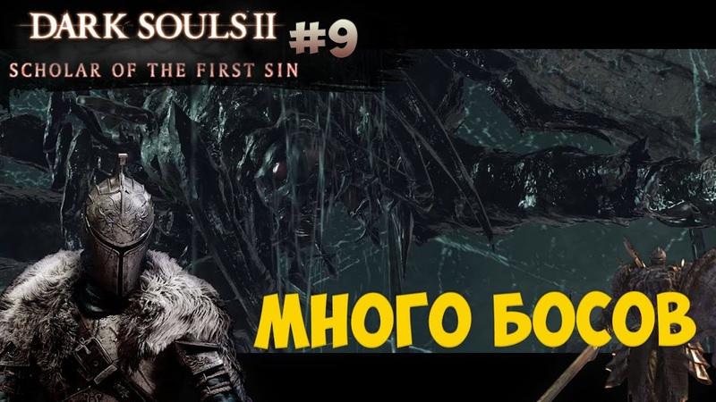 Нажка, Командир Крысиной гвардии, Фрея и Странствующий Маг (Dark Souls 2: SotFS) [9]