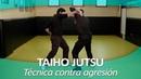 TAIHO JUTSU 4 sistema japonés defensa personal policial Técnica contra agresión al agente