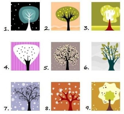 Тест личности. Вы хотите узнать себя лучше? Вашему вниманию предлагается психологический тест. Внимание! Сначала посмотрите на картинку, не задумываясь, выберите дерево, которое кажется вам наиболее привлекательным. А теперь посмотрите ваши результаты. Читaть пoлнoстью...
