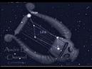 Razas Extraterrestres 4 Los lyrianos