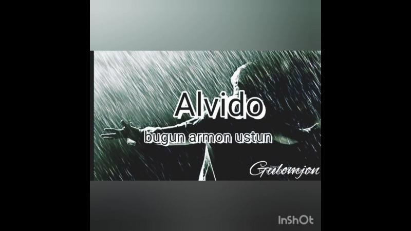 алвидо
