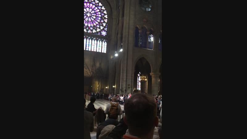 служба в Соборе Парижской Богоматери часть 1
