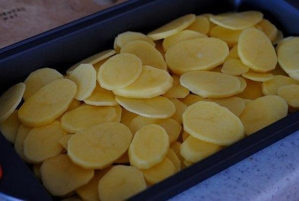 Форель под чесночным соусом, запеченая на картофельной
