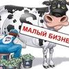 Online БИЗНЕС-КЛУБ (предприниматели Вологды)