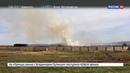 Новости на Россия 24 Огненная напасть в Иркутской области