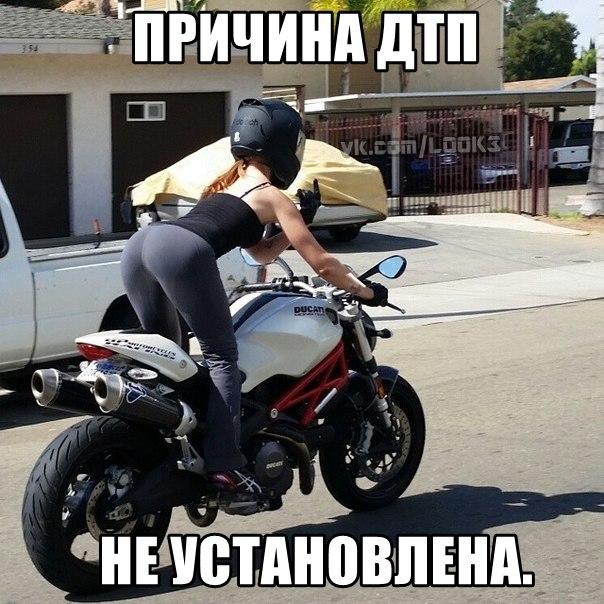 http://cs14101.vk.me/c7006/v7006883/1975f/SVW1KWoljoY.jpg