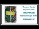 Полина Сухова. Инструкция по эксплуатации мозга для обывателя