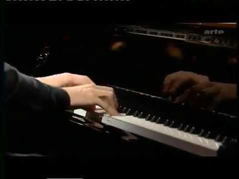 Руки пианиста № 0034