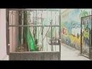 """Короткометражный фильм """"Солнечный ветер"""" (2011). Pежиссер Амир Галиаскаров."""