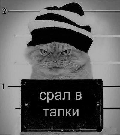 Астин Уфимцев, 16 июля , Уфа, id6460777
