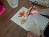 Poppy in watercolor