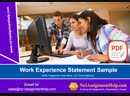 Provides the Work Experience Statement Sample