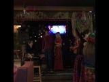 zebra_sushi_kz video