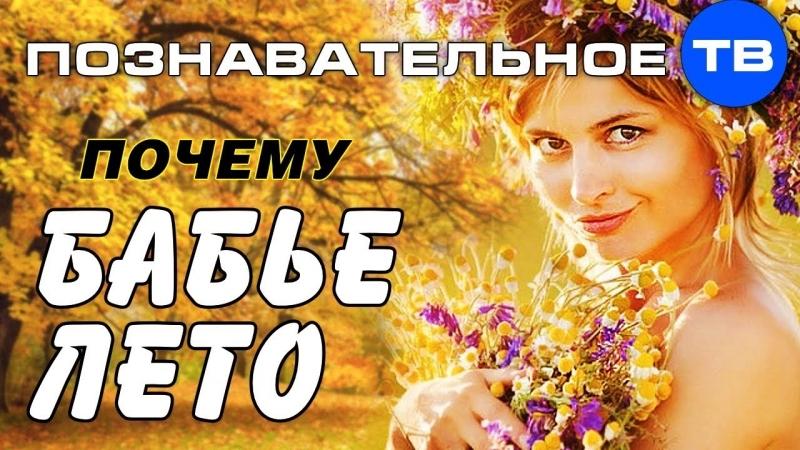 Почему называется БАБЬЕ ЛЕТО (Познавательное ТВ, Артём Войтенков)