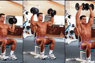 Попробуйте.  Выполнять жим Арнольда необходимо в день тренировки плеч (либо в день жимовой тренировки...