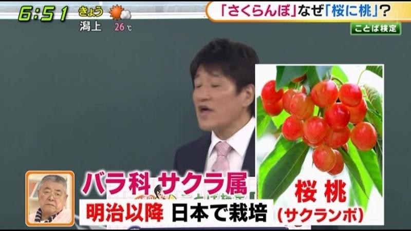 2018-06-19  桜桃