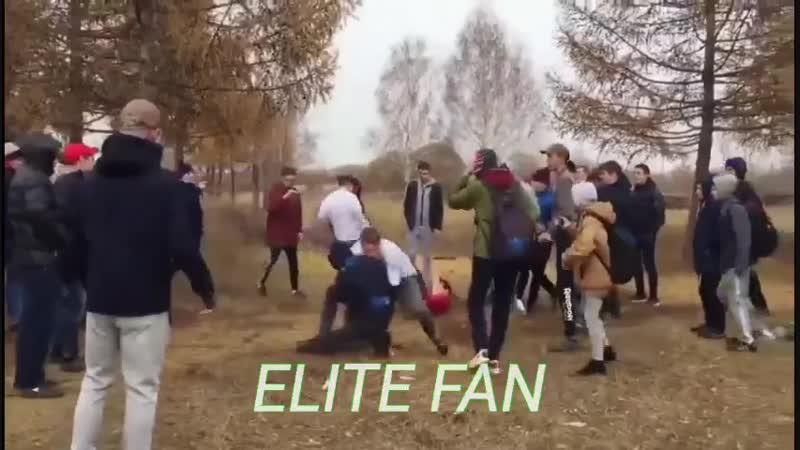 Gazaryan X elite fan