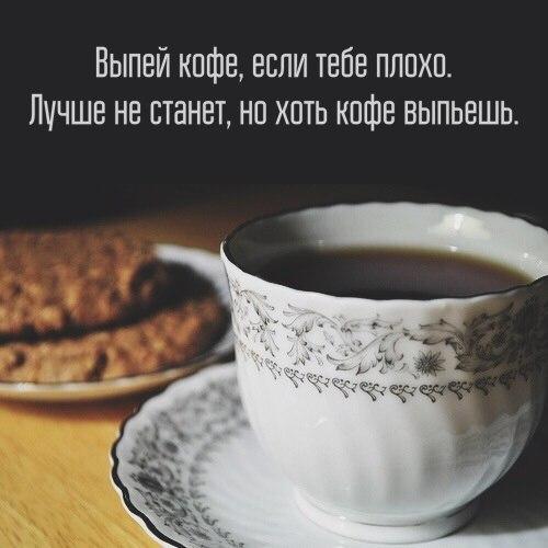https://cs7057.vk.me/c543100/v543100714/355ce/OrqWdQNLaqk.jpg