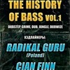 THE HISTORY OF BASS vol1