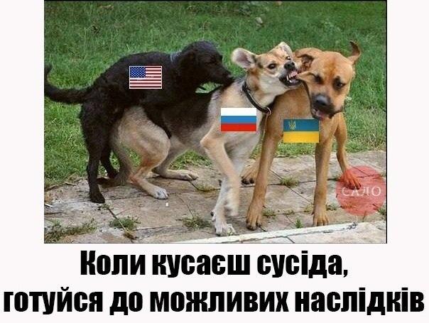 """""""Санкций недостаточно"""": в США предлагают начать поставлять Украине оружие и пригласить Киев в НАТО - Цензор.НЕТ 5430"""