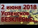 2 июня 2018. Летняя мормышка. Боковой кивок. Рыбак Андрей Николаев. Успенское.