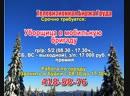 24 января 06 30 Работа в Нижнем Новгороде Телевизионная Биржа Труда