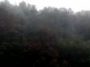 Дождь усиливается💧💧💧Появился ветер