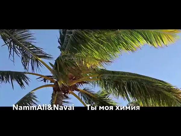Hammali Havai - Ты моя химия (VK Track)
