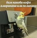 Илья Давыдов фото #8