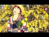 Я люблю тебя осень!!! Видеоролики на заказ. автор Людмила