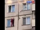 Жительница Новосибирска спасла застрявшего на шестом этаже котенка